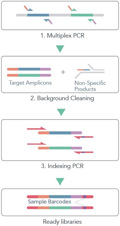 CleanPlex Amplicon Sequencing Target Enrichment and Library Preparation Workflow