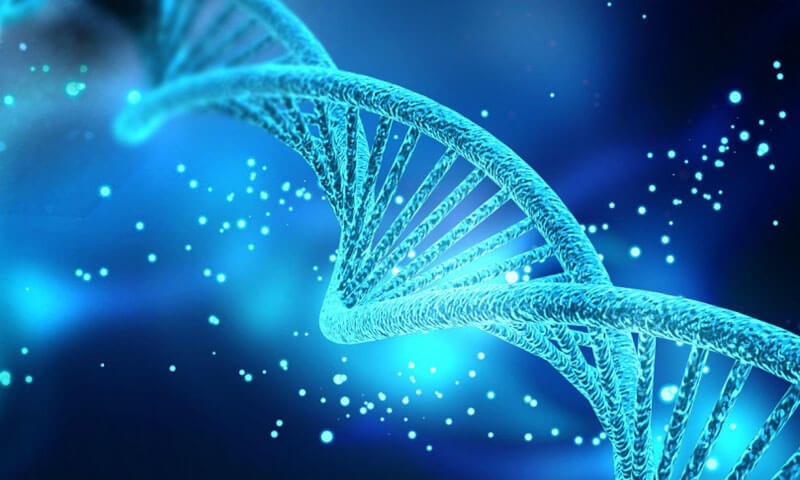 inherited diseases and genetic disorders research via NGS targeted amplicon sequencing