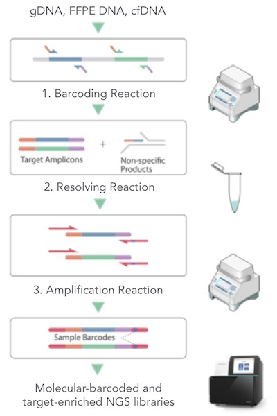 CleanPlex UMI Amplicon Sequencing Workflow for Cancer Liquid Biopsy and low frequency allele detection
