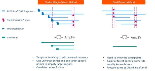 CleanPlex Single Primer Fusion and Dual Primer Fusion Detection Assay Workflows