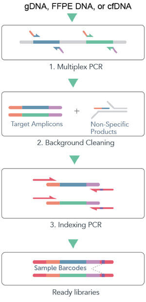 cleanplex DNA amplicon sequencing target enrichment and library preparation workflow