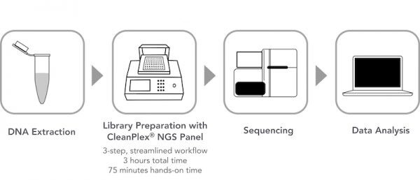 A typical targeted sequencing workflow