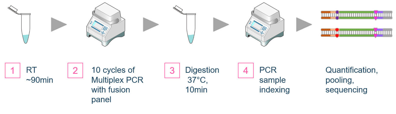 AccuFusion Dual-Primer Gene Fusion Detection Workflow