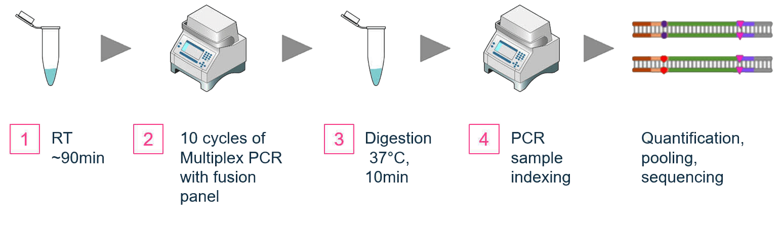AccuFusion-Dual-Primer-Gene-Fusion-Detection-Workflow-cp
