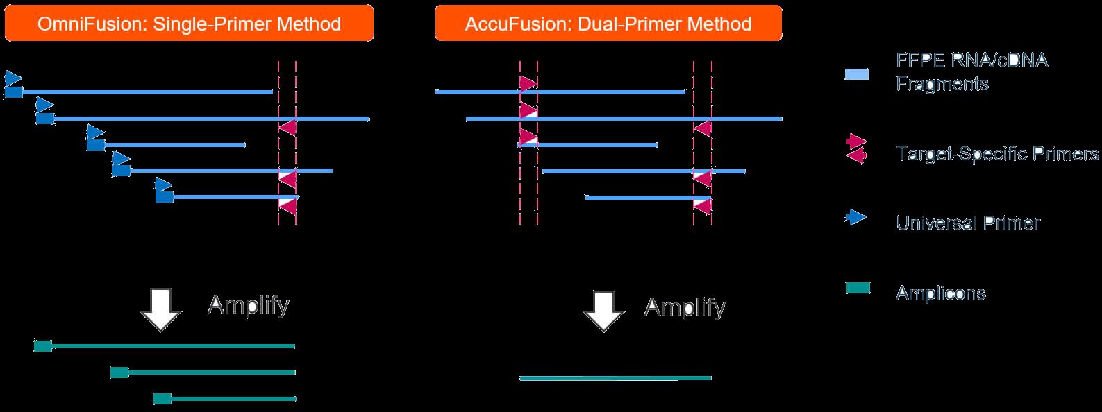 AccuFusion vs OmniFusion Targeted RNA fusion detection schematic comparison