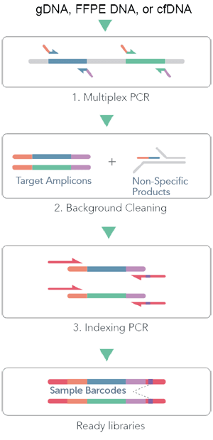cleanplex DNA amplicon sequencing workflow