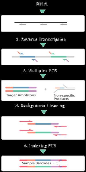 cleanplex RNA target enrichment library preparation workflow