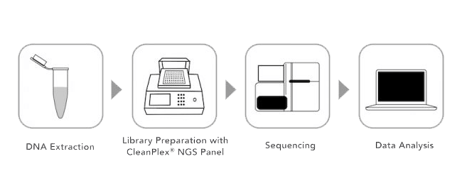 targeted amplicon sequencing workflow